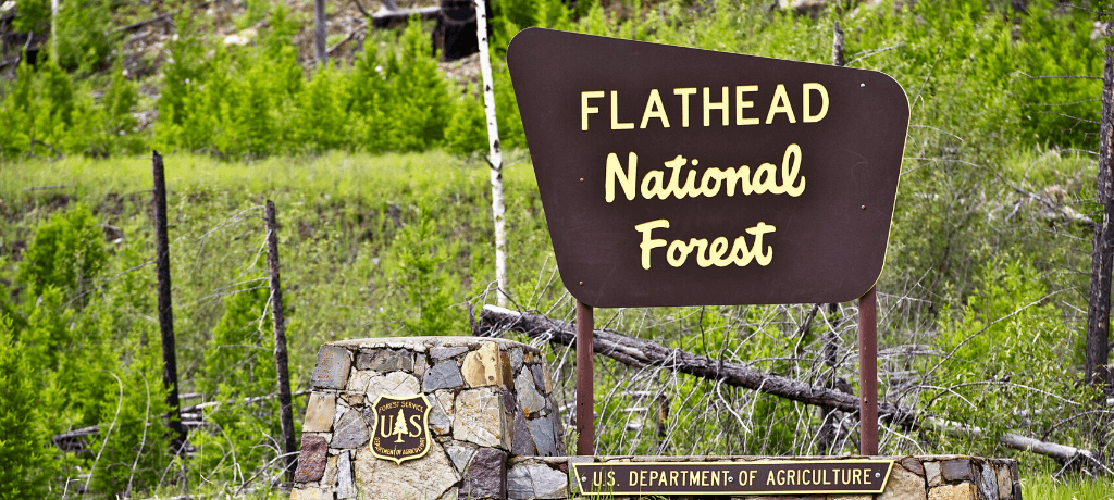 Flathead National Forest sign in Montana