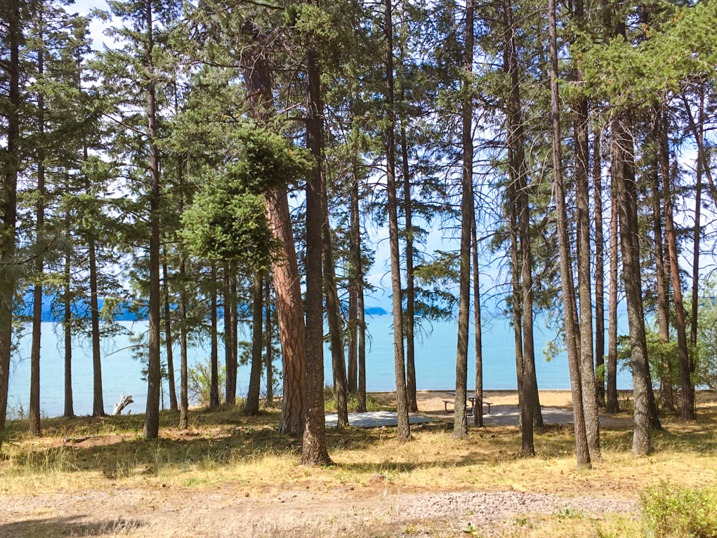 Finley Park Campground by Flathead Lake in Montana